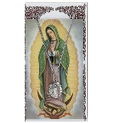 Our Lady of Guadalupe Medal and Prayer Card